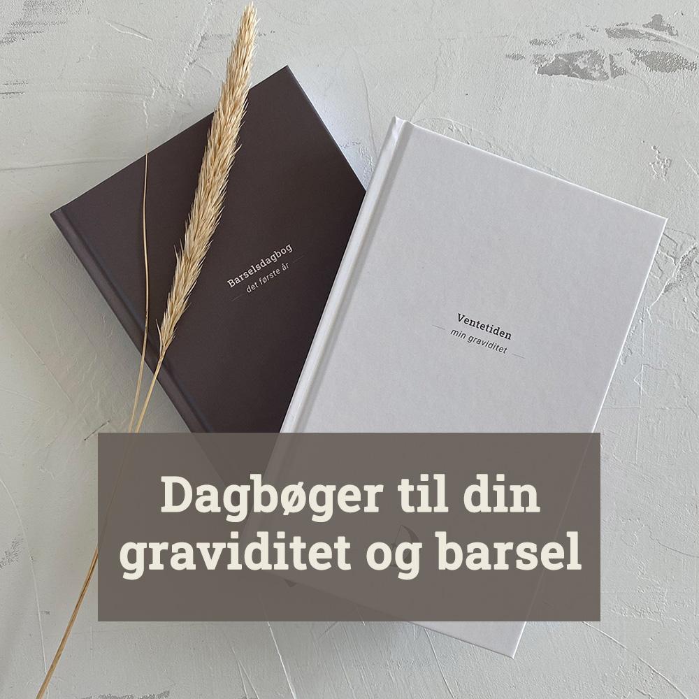 Dagbøger til graviditeten