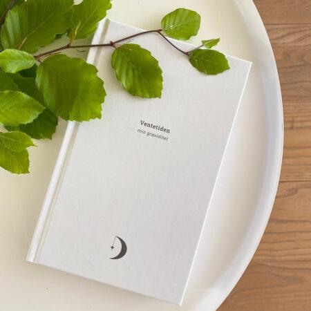 Ventetiden - graviditetsdagbog